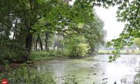 2021.09.28_park_w_Boguszynie__kapliczka_w_B.G001.jpg